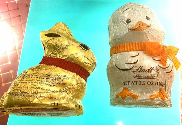 Large Lindt Bunny or Chick