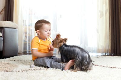 Little boy playing with puppy on clean rug