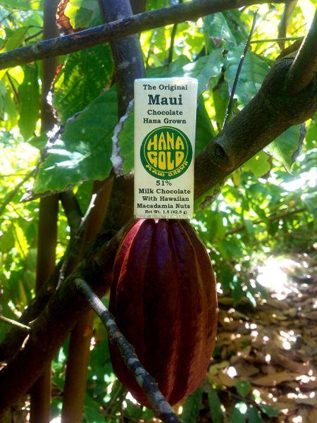 51% Dark Milk with Macadamia Nuts