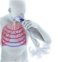 Medical Acoustics Lung Flute