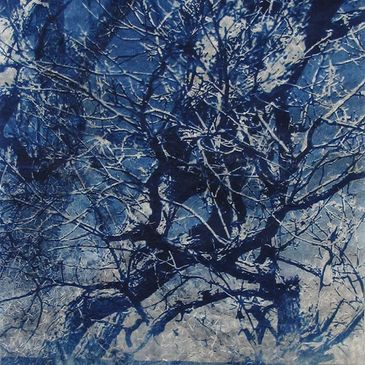 Cyanotype of trees in winter.
