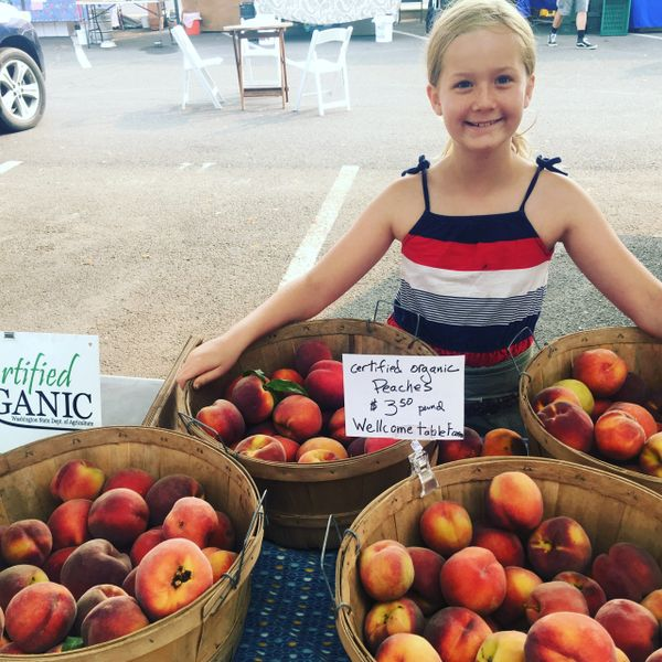 Farmstand and Market Credit