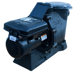 Variable Speed 1.65 HP Century Motor | Special Price