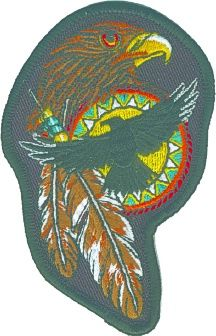 Hawk, Feathers, Indian Shield (MED)
