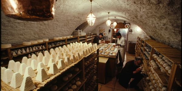 Cheese cave in Italy