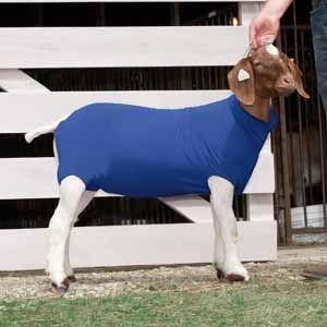 Spandex Goat Tube
