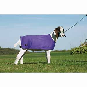 Goat Underblanket