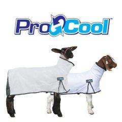 ProCool Goat Blanket