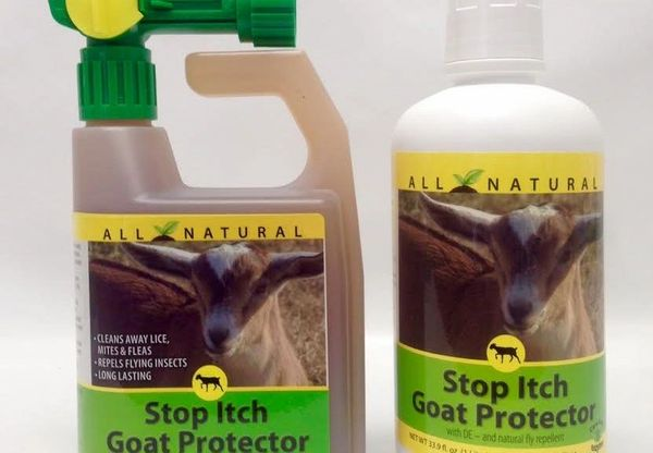 Stop Itch Goat Protector