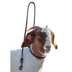Goat Neck Tie with Snap Lead