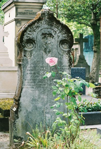 Paris tomb with flower