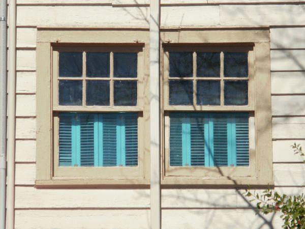 teal blinds