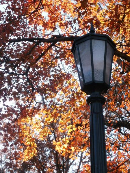 UNC lantern