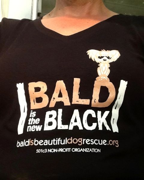 BALD is the NEW BLACK V-Neck Ladies Fitted Tee (Black)