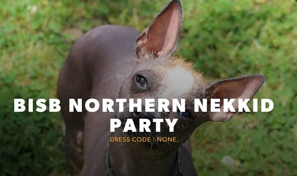 Northern Nekkid Party Adult Registration