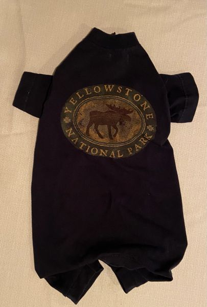 Yellowstone National Park Tee Jammie - Standard Large