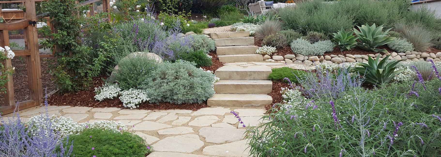 Drought tolerant landscaping using imported stone and water wise plants