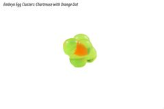 Embryo Egg Clusters: Chartreuse with Orange Dot