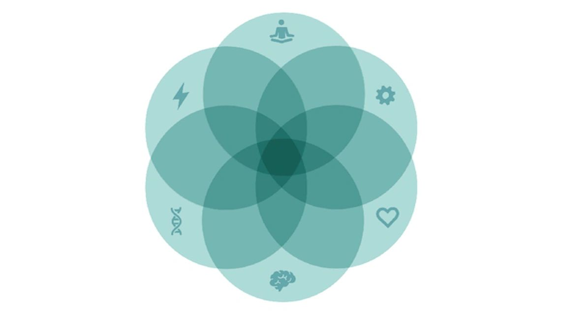 A series of six interlinking circles, each containing one of the following symbols: lightning bolt, meditating man, heart, brain, dna sequence, and a gear.