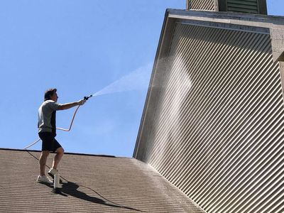 ugly shingles roof cleaning michigan soft-wash mold mildew algae exterior washing geroux siding