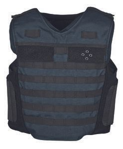 Tactical Assault Carrier with Modular Webbing