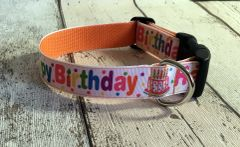 Happy Birthday Handmade Dog Collar