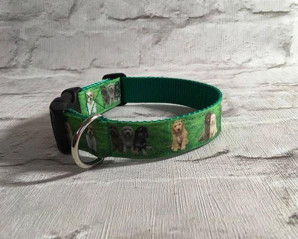 Handmade Multi Cockapoo Dog Collar.