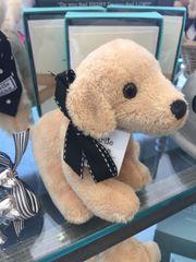 Mini Charlie Stuffed Animal