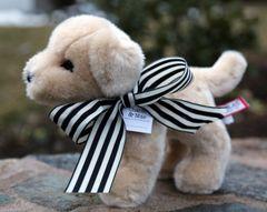 Charlie Stuffed Animal