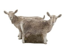Goat Salt and Pepper by Quail Ceramics