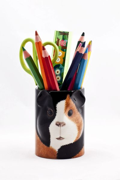 Guinea Pig Pen Pot Multi by Quail Ceramics