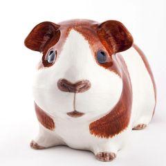 Guinea Pig Quail Money Box - Dutch