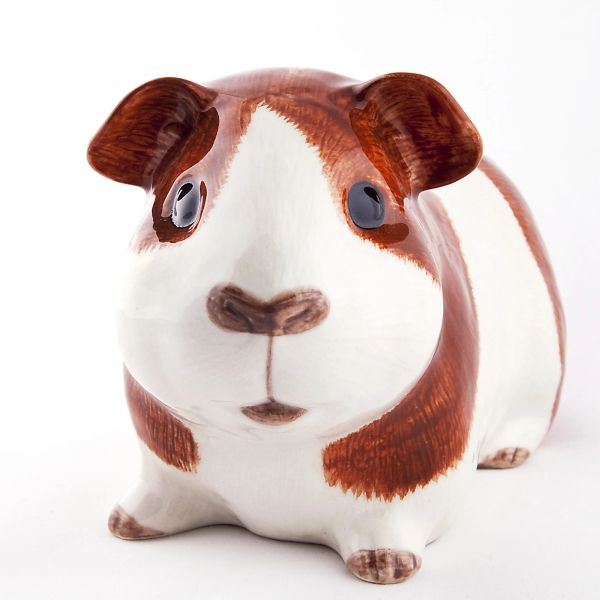 Guinea Pig Quail Money Box - Dutch