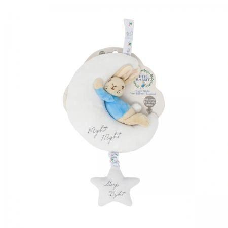 Night Night Peter Rabbit Musical Toy