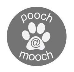 POOCH @ mooch more products COMING SOON!