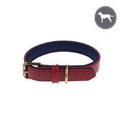 Red Dog Collar - Lab Stamp
