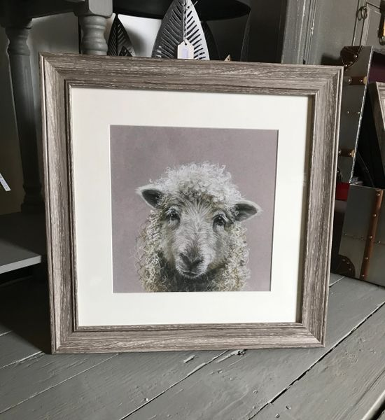 Suzy Framed Mounted Print