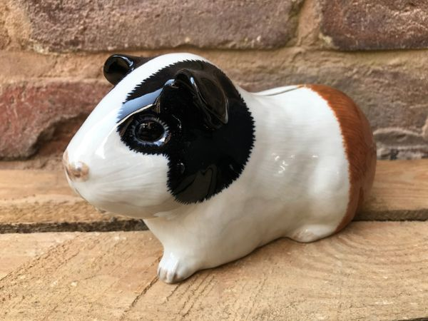 Guinea Pig Money Box by Quail - Multi