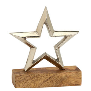 Small silver metal star on base