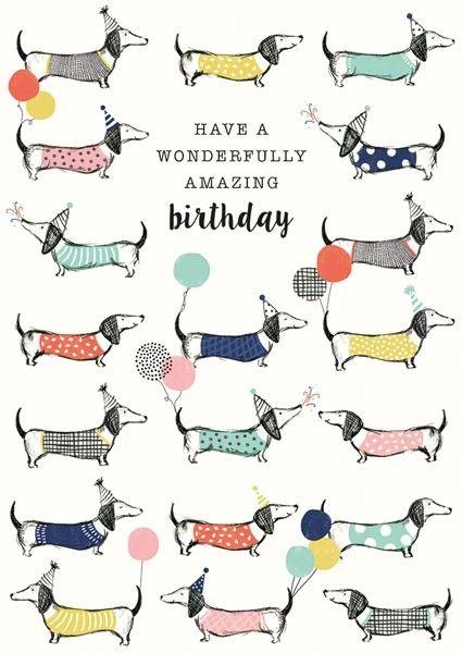 Multi Frank Sausage Dog Amazing Birthday NF15