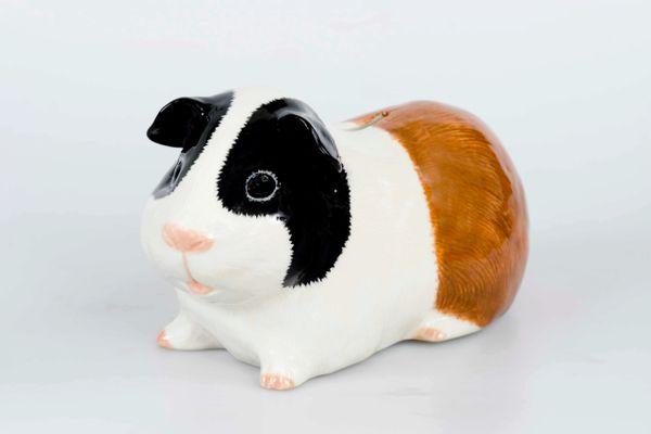 Guinea Pig Money Box by Quail - Try