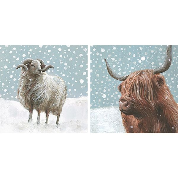 Highland Cow & Sheep Duo Card Pack WAX58
