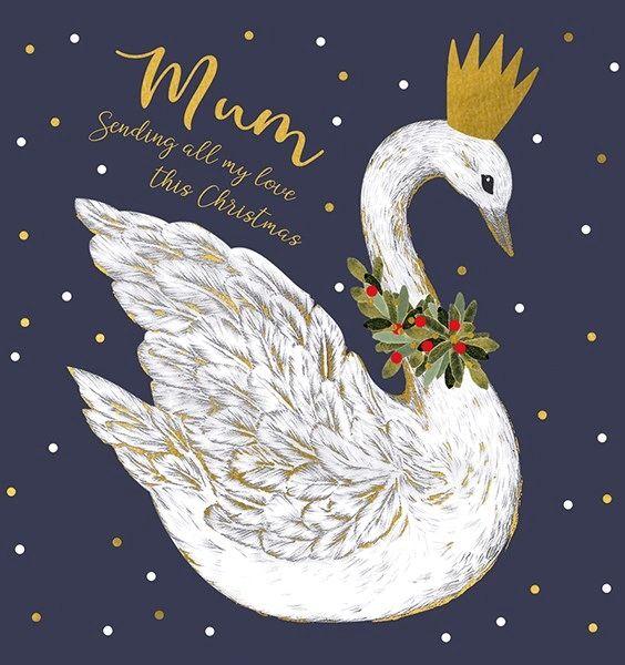 Mum Swan afrx174