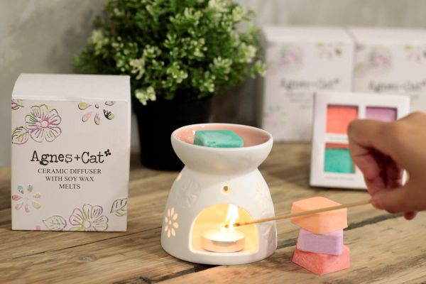 Ceramic Diffuser with Soy Wax Melts