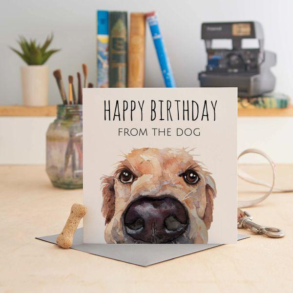 Happy Birthday from the dog U40