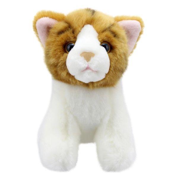 Cat - Gold Stripe - Wilberry Mini's