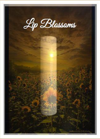 Lip Blossom: About Lip Blossoms