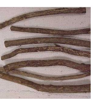 African Chew Stick