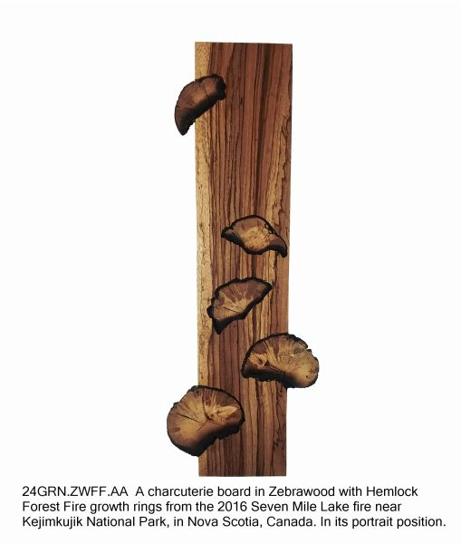 """24"""" Charcuterie Board in Zebrawood with Hemlock Forest Fire Growth Rings"""