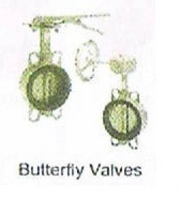 """Butterfly Valve 2""""1/2"""